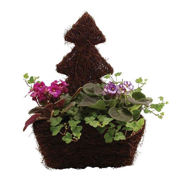 Festive Planters