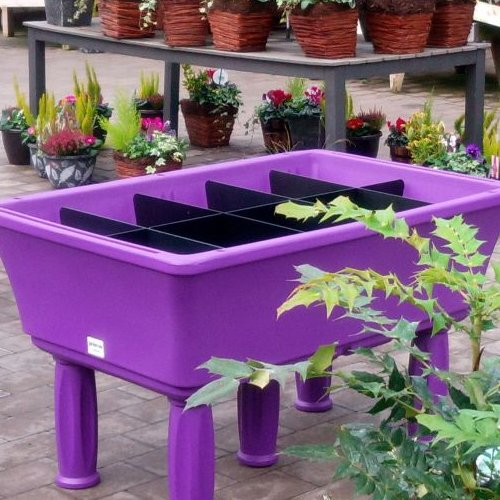 Self Watering Raised Planter